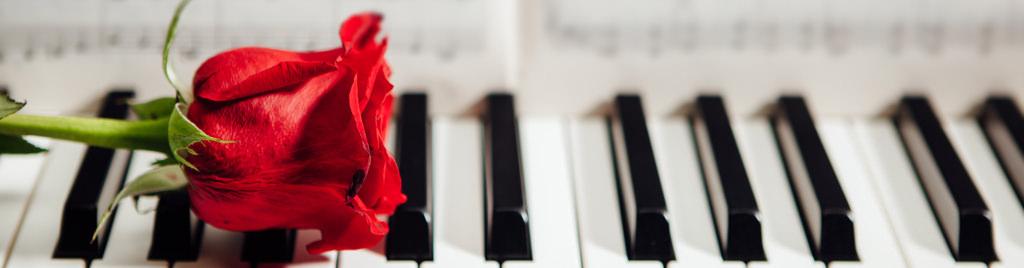 Musik til bryllup i Jylland